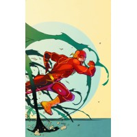 FLASH HC VOL 05 HISTORY LESSONS (N52) - Brian Buccellato & Various