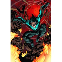 NIGHTWING TP VOL 02 ROUGH JUSTICE - Chuck Dixon