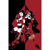 HARLEY QUINN A CELEBRATION OF 25 YEARS HC - Paul Dini, Karl Kesel, Amanda Conn...