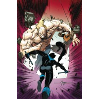 NIGHTWING TP VOL 05 RAPTORS REVENGE REBIRTH - Tim Seeley