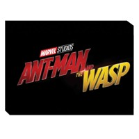 MARVELS ANT-MAN AND WASP ART OF MOVIE HC - Eleni Roussos