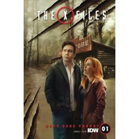 X-FILES CASE FILES HOOT GOES THERE #1 (OF 2) CVR A NODET - Joe Lansdale, Keith...