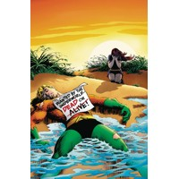 AQUAMAN THE SEARCH FOR MERA DELUXE ED HC - Steve Skeates