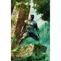 BLACK PANTHER #170 CHECCHETTO LEG WW - Ta-Nehisi Coates