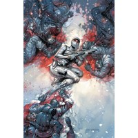 SILENCER TP VOL 02 HELLIDAY ROAD - Dan Abnett