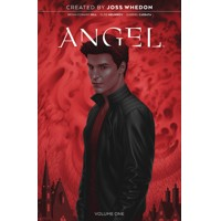 ANGEL 20TH ANNIVERSARY ED HC VOL 01 - Bryan Edward Hill