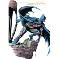 BATMAN BY NEAL ADAMS TP BOOK 03 - Dennis O'Neil