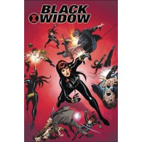 BLACK WIDOW POSTER BOOK TP - Various